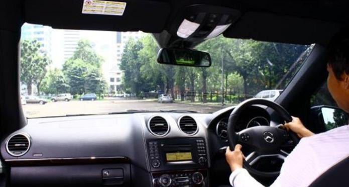 Gambar ini menunjukkan seorang pengemudi sedang mengemudi di dalam mobil dan terdapat banyak pohon di depannya