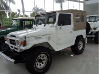 Toyota Land Cruiser 3.9 Manual 1982 SUV