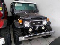 Toyota Land Cruiser 1981 dijual