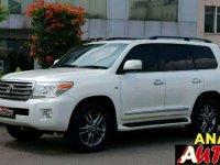 2010 Toyota Land Cruiser Dijual